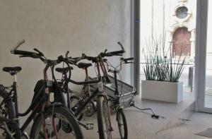 musje pitter fietsen stalling
